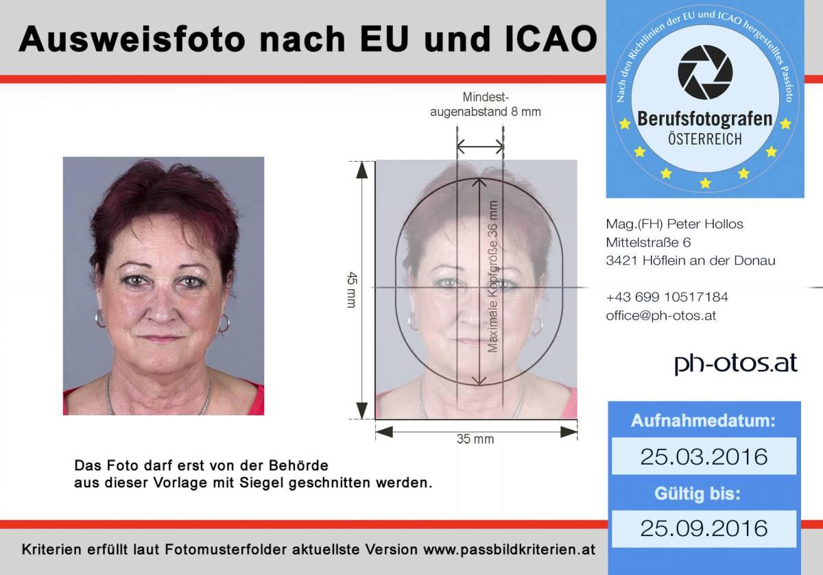 Ziemlich Uns Passfoto Vorlage Fotos - Beispiel Wiederaufnahme ...
